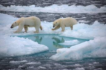 Einigung auf EU-Klimaziel für 2030