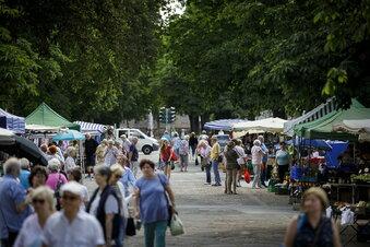 Stadtrat bestätigt neuen Marktbetreiber
