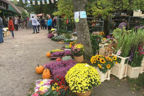 """Einkaufen und Schenken: """"Waldtrödelmarkt"""" in der """"Hofewiese"""" in der Dresdner Heide"""