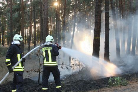 Zittau: Lagerfeuerbrand flammt ein zweites Mal auf