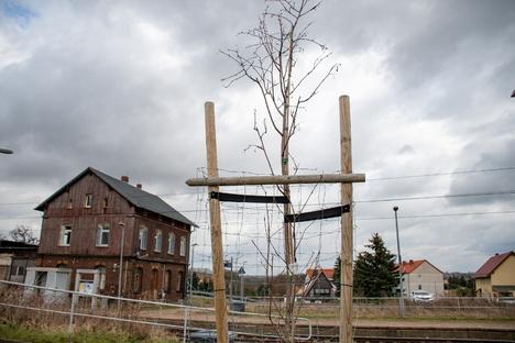 Zschaitz-Ottewig soll grüner werden