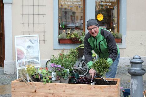 Bautzen: Neues Hochbeet am Fleischmarkt