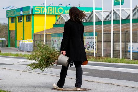 Bautzen: Bautzen: Baumärkte mit Gartencenter dürfen öffnen