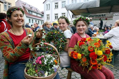Mit Bus und Rad zum Naturmarkt in Wehlen