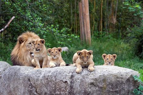 Leipzigs Zoo auf Namensuche