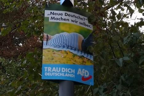 Frauke Petry auf AfD-Plakaten: Das sagen Juristen