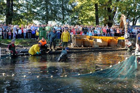Warum die Fischerfeste ins Wasser fallen