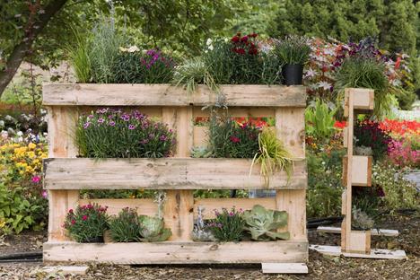 Tipps für vertikale Gärten