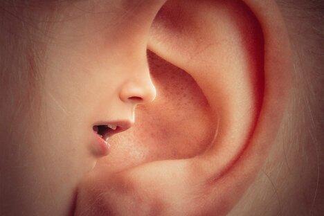 Hightech für die Ohren