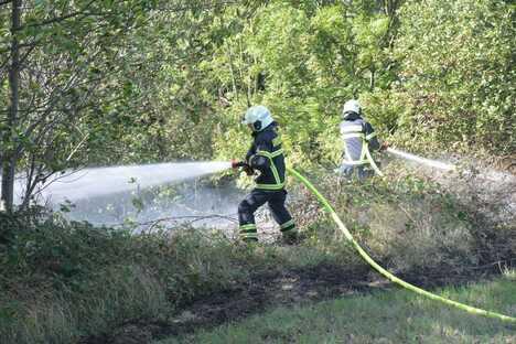 Böschungsbrand fordert Feuerwehr Döbeln