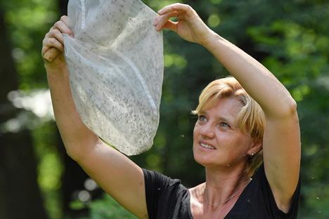Leben und Stil: Hilfe, die späten Mücken kommen!
