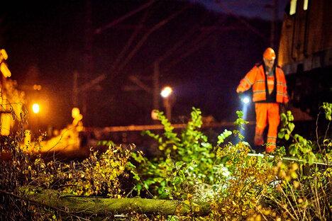 Baum stört Zugverbindung in Pirna