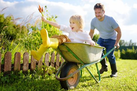 Bauen und Wohnen: Auf geht's in die Erntezeit