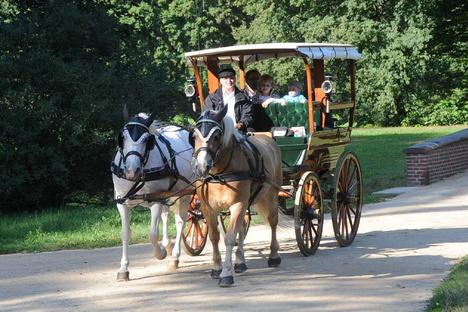 SOE: Schwerer Unfall mit Pferdekutsche