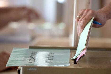 Kiebitzer gehen am Sonntag zur Wahl