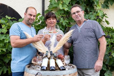 Freital: Sachsens bester Wein kommt aus Pesterwitz