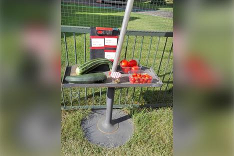 Dürfen Gärtner ihre Ernte vor dem Haus verkaufen?