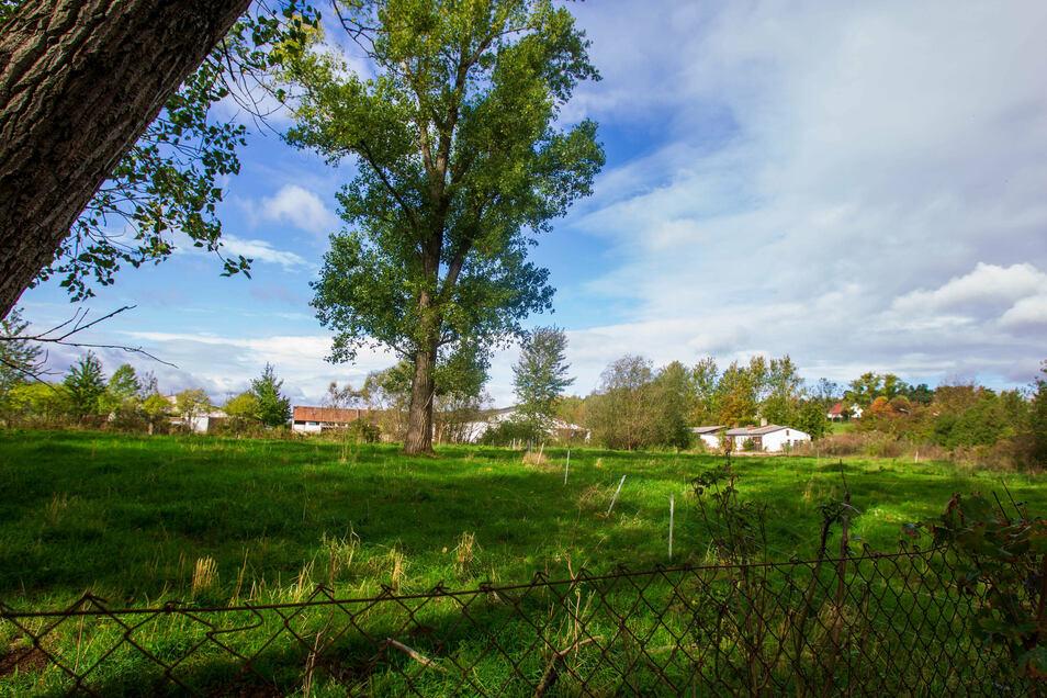 Im hinteren Bereich, wo die alten Stallgebäude zu sehen sind, soll ein kleines Gewerbegebiet entstehen.