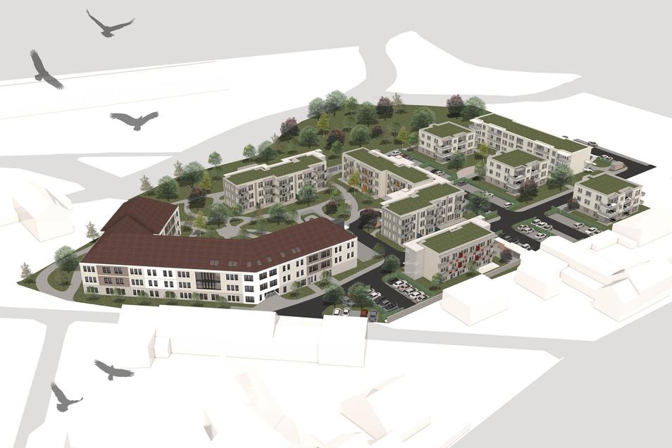 So soll das neue Wohngebiet der Zille-Stadt einmal aussehen. Das große Gebäude ist das Altenpflegeheim, das jetzt im ersten Bauabschnitt errichtet wird.
