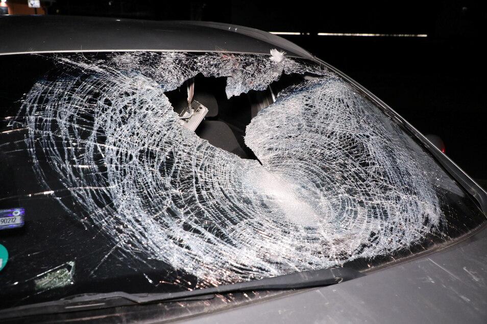 Drei von vier Insassen dieses polnischen Pkw wurden auf der A 13 verletzt, als ein Schwan in die Frontscheibe flog.