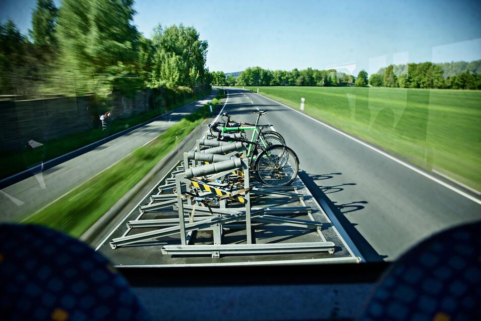 Auch ins Lausitzer Seenland fahren Busse mit Fahrradanhängern.