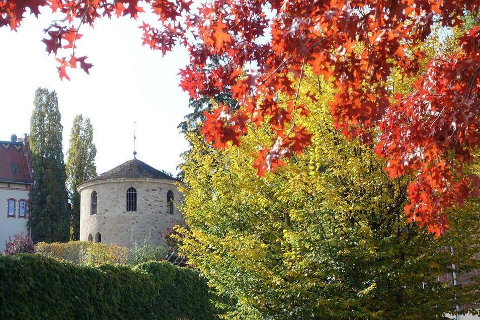 Ein Lichtblick in der Görlitzer Altstadt. Den hat Wolfgang Breitkopf eingefangen. Nur 74,5 Sonnenstunden gab es diesen Oktober in Görlitz.