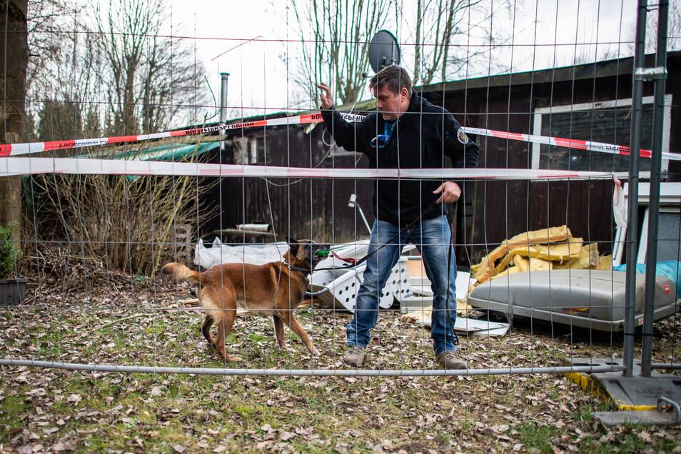 Diensthundeführer Jörg Siebert steht mit seinem Belgischen Schäferhund Artus, der auf Datenträger spezialisiert ist, an der abgesperrten Parzelle des mutmaßlichen Täters auf dem Campingplatz Eichwald und gibt dem Hund als Belohnung einen Ball. Der Spürhun
