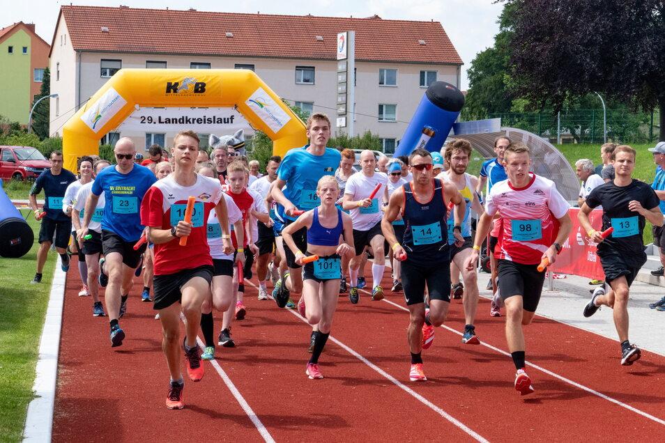 180 Läufer nahmen am Landkreislauf in Roßwein teil.