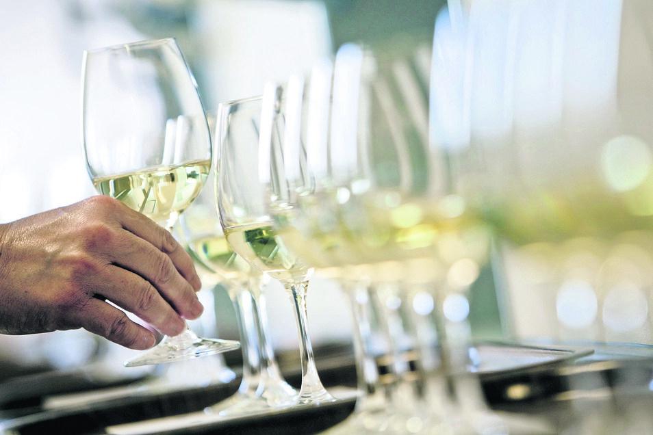 Zur Großen Gemeinsamen Jungweinprobe treffen sich am 10. Mai Vertreter der beiden Anbaugebiete Sachsen und Saale-Unstrut in der Börse in Coswig.