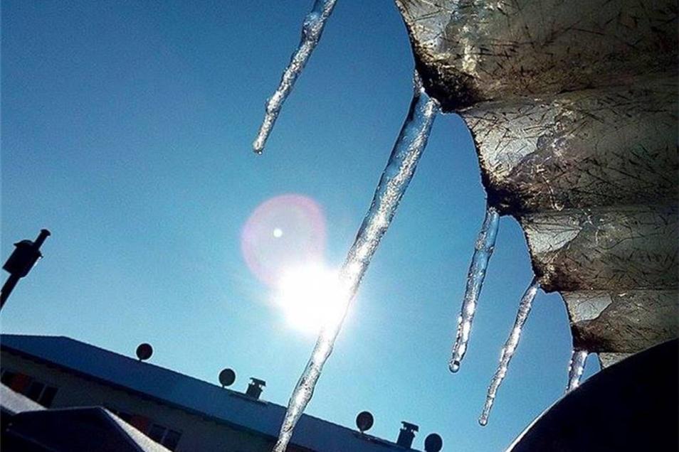 Pirna. Und noch einmal Eiszpafen in der Sonne. Vanessa Oddoy hat sie auf Arbeit in einer Pause fotografiert.