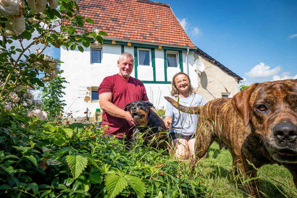 Susanne Dick und Jochen Mismahl haben sich auf den Grundstück für sich und ihre Tiere ein Kleinod geschaffen.