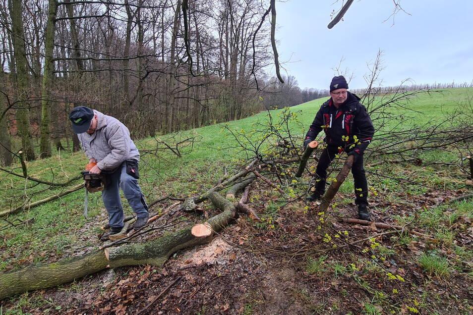 Mitglieder des Heimatvereins bei der jüngsten Aufräumaktion im Röhrsdorfer Grund.