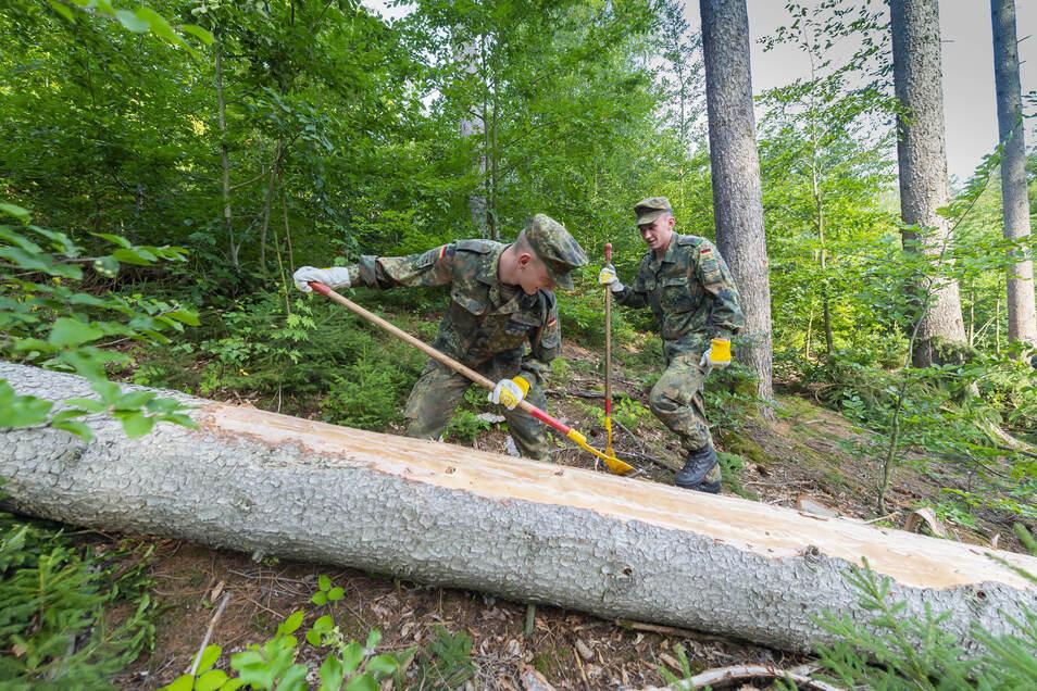 Der Einsatz der Bundeswehr in sächsischen Wäldern wird wegen der vielen Schäden verlängert.