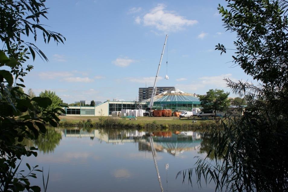 Neben dem 25-Meter-Becken (links) soll in Richtung Gondelteich das zusätzliche Becken entstehen. Derzeit erhält die Kuppel des Lausitzbades für 500 000 Euro ein neues Dach aus Aluminium-Blech.