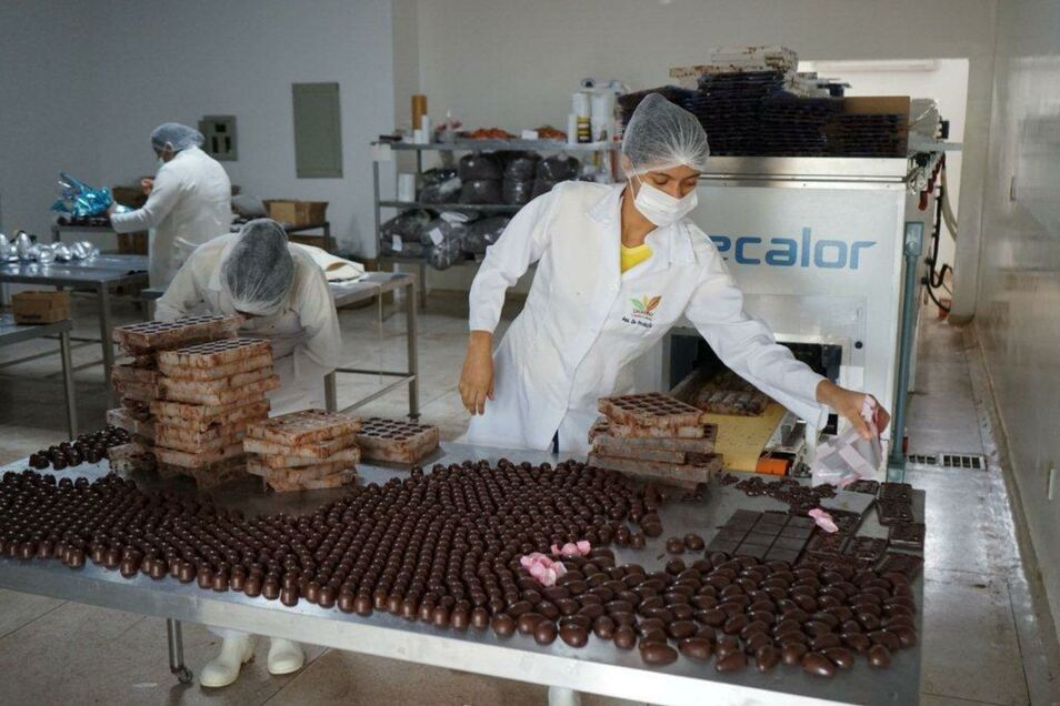 Die Kooperative Cacauway hat inzwischen sogar schon eine eigene kleine Schokoladenfabrik.