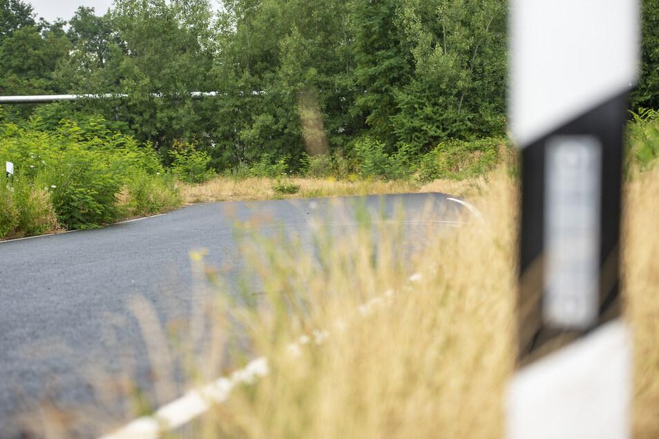 Seit Jahren endet die S 84 an der Naundorfer Straße in einer Wiese. An diesem Anblick wird sich so schnell nichts ändern. Erst 2020 soll das Planfeststellungsverfahren beginnen. Dann dauert es mindestens anderthalb Jahre bis zur Genehmigung.