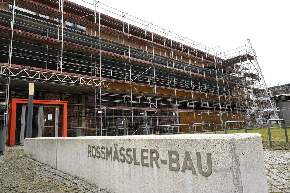 Der Roßmäßler-Bau auf dem Tharandter Campus ist schon seit Monaten eingerüstet.