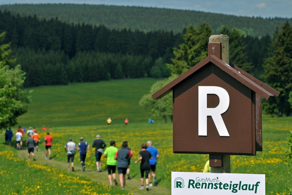 Da geht es lang. Das bunte Teilnehmerfeld läuft auf dem Rennsteig, der Supermarathon ist mehr als 70 Kilometer lang.