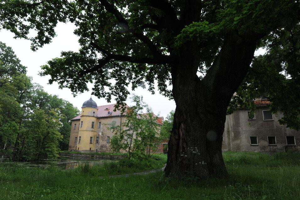 Der Berbisdorfer Park am Schloss.