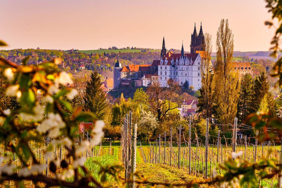 Ein atemberaubender Blick auf die Albrechtsburg in Meißen.