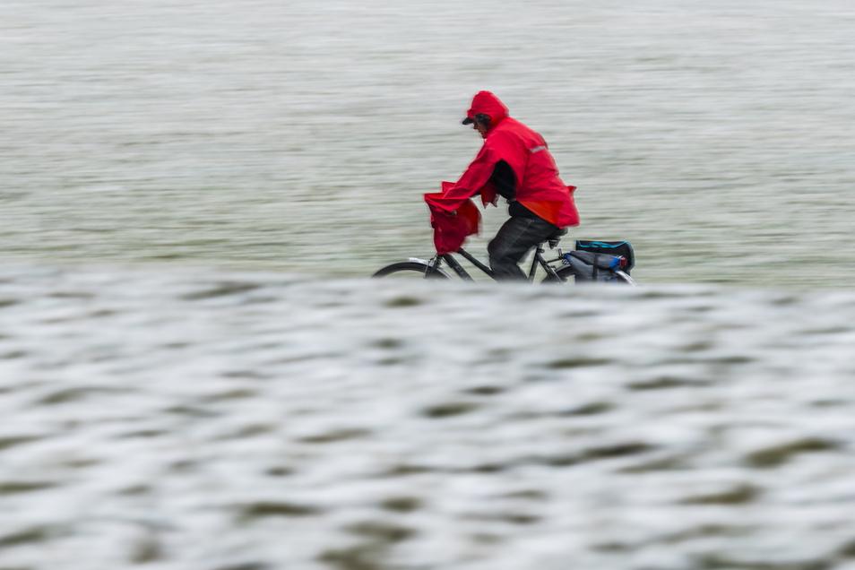 Ein Stück des Elberadweges ist im Januar wegen des Skiweltcups für Radfahrer gesperrt.