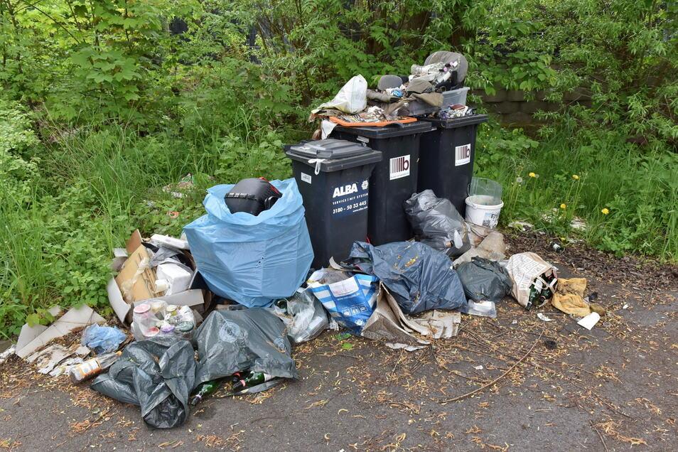 In der ersten Juniwoche stapelt sich der Müll noch auf dem Parkplatz der Netto-Filiale.