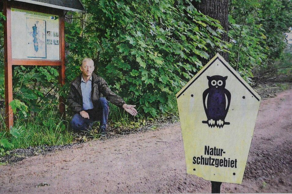 Volker Wilhelms vom Nabu zeigte der SZ im Naturschutzgebiet schon einmal den womöglich illegal aufgeschütteten Weg.