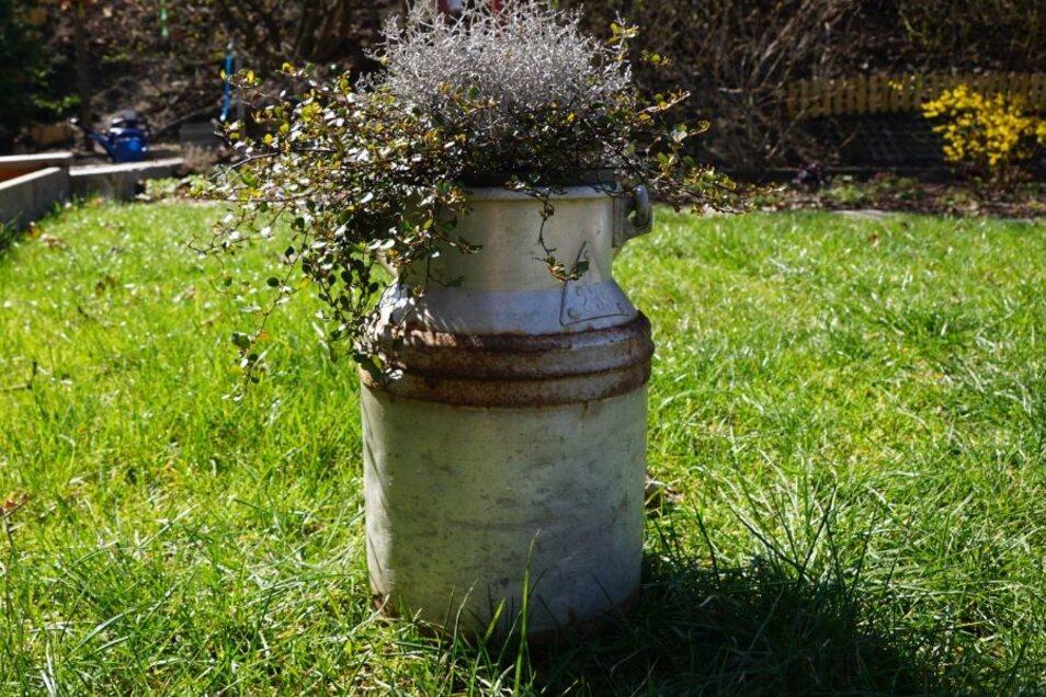 Aus ausgedienten Kannen, Töpfen oder sogar Backformen können echte Hingucker im Garten werden.