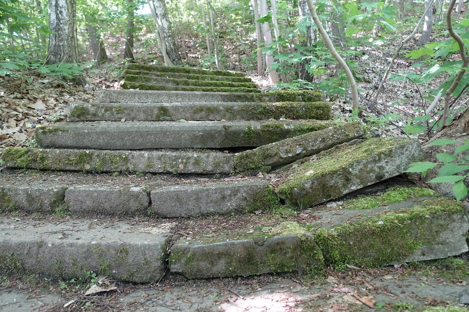 Die Treppe zwischen dem oberen Teich und dem Sonneck ist in einem maroden Zustand und gefährlich. Deshalb soll sie neu gebaut werden.