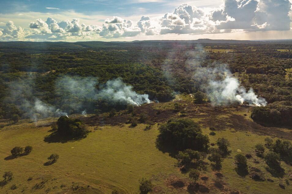 Land im Kolumbien wird abgebrannt: Im Jahr 2017 gingen weltweit 16 Prozent der Abholzung von Tropenwald im Zusammenhang mit Handel auf das Konto von EU-Importen.