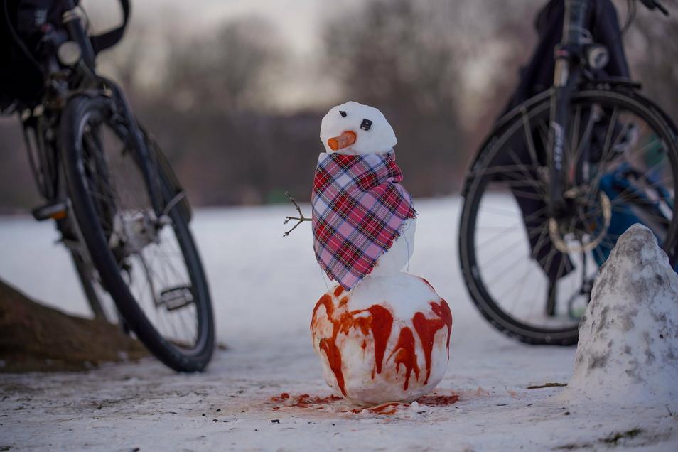 Ein Schneemann im Alaunpark.