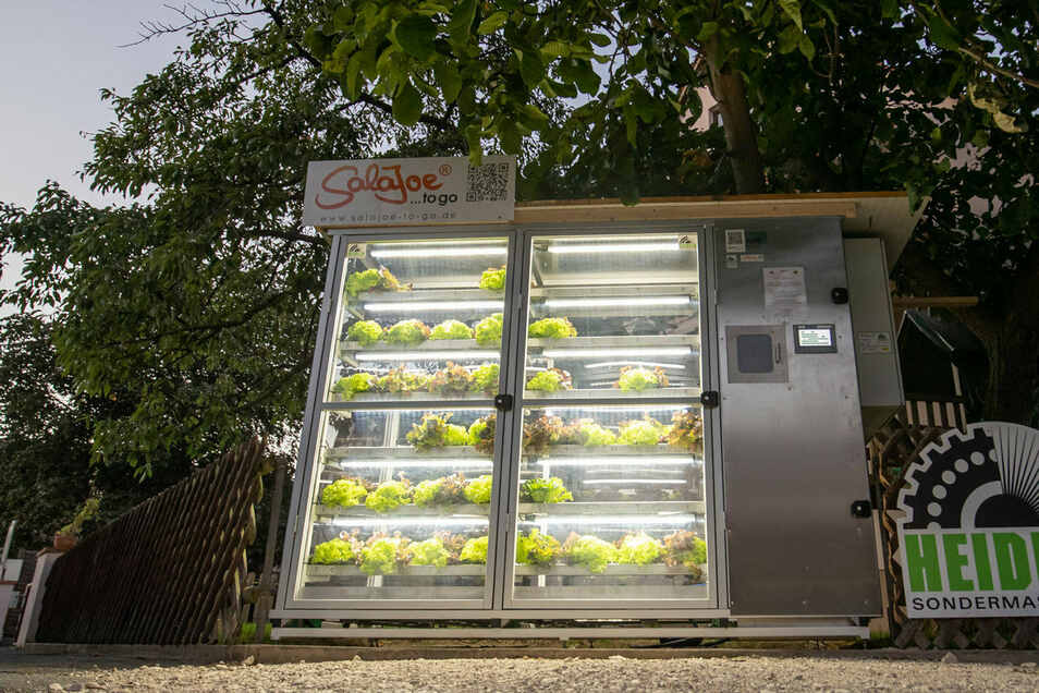 Der Automat für Salate mit Wurzelballen in Nürnberg  haben eine Gärtnermeister und ein Maschinenbauer zusammen entwickelt, um Lebensmittelverschwendung zu vermeiden und Verpackungsmüll zu reduzieren.