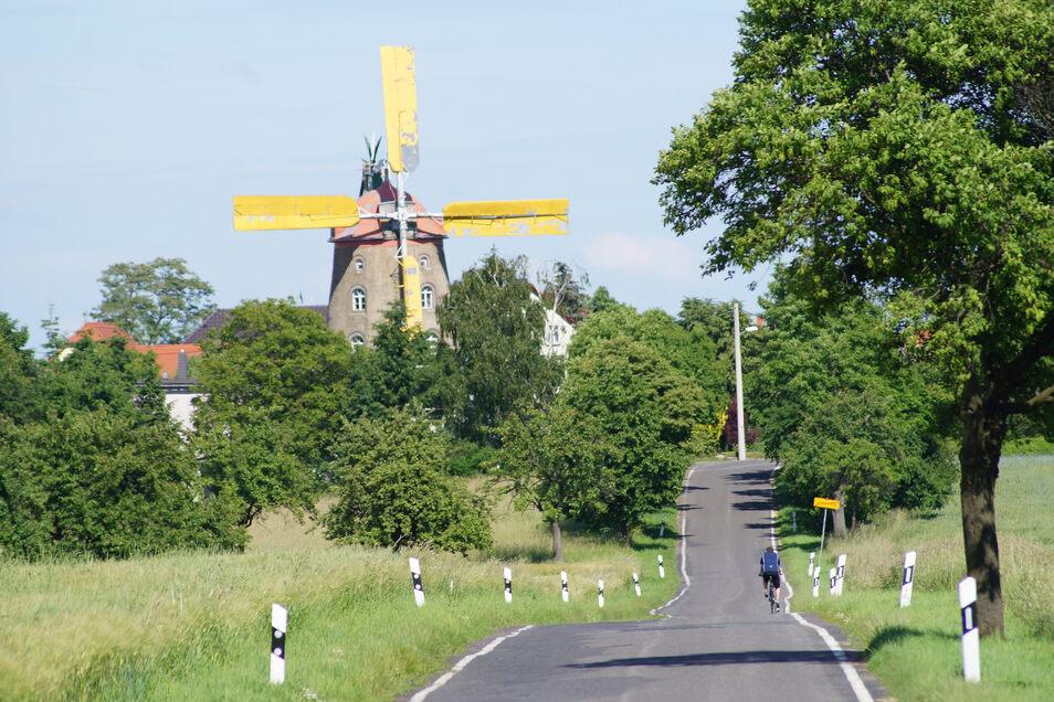 """Die Holländer-Windmühle Pahrenz lädt zum Hoffest am 9. und 10. Juni mit Führungen und Schauvorführungen von 10 bis 18  Uhr. Sonntag 13 Uhr """"Meisterschaft im Mehlsackweitwurf"""", Montag 9 Uhr Festgottesdienst."""