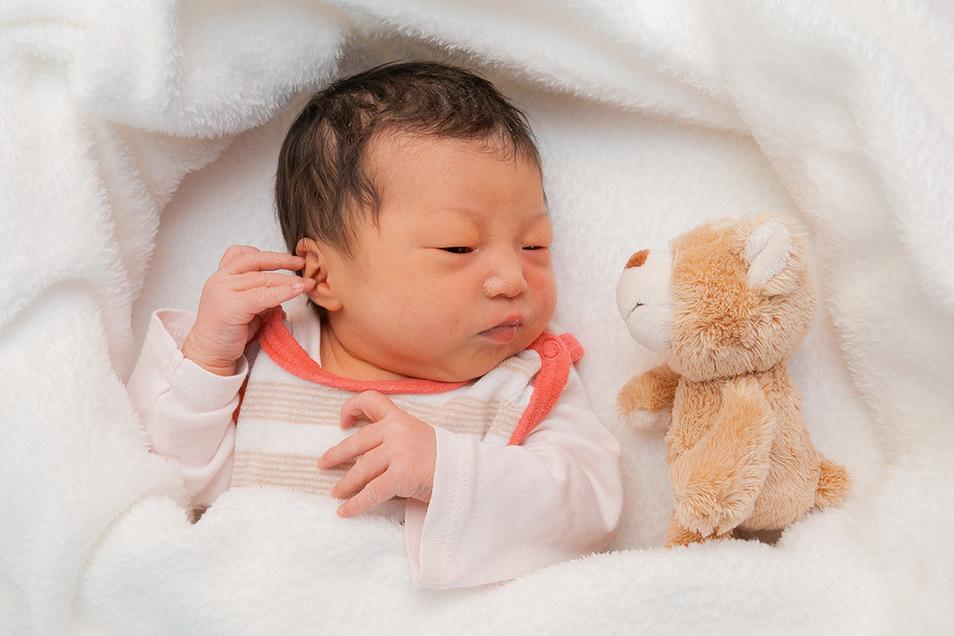 Skye Yining Xu, geboren am 13. November, Geburtsort: Universitätsklinikum Dresden, Gewicht: 2.855 Gramm, Größe: 47 Zentimeter, Eltern: Jing und Haiyang Xu, Wohnort: Dresden-Striesen